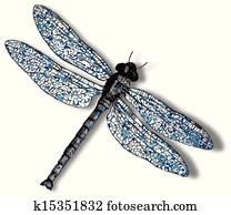 dragonfly against white