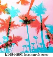 Exotic Palm Trees Montage