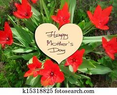 Happy Mother's Day flowers tulips
