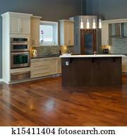 Interior kitchen Design