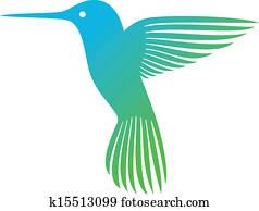 kolibri, (colibri)