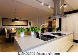 Urban apartment - kitchen counter