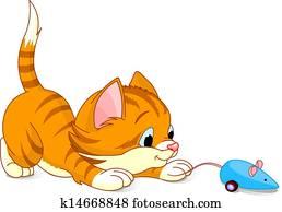 verspielt, katzenbaby