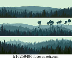 Banners of hills coniferous wood.