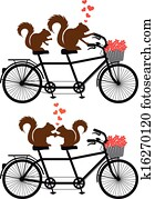 squirrels on bicycle, vector