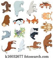 Various Wildlife Animals set
