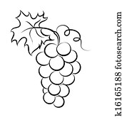 Vector monochrome illustration of grapes logo.