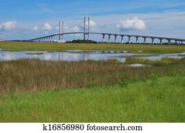 Sidney Lanier Bridge and Marsh View