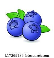 Cartoon blueberry.