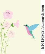 kolibri, hintergrund