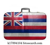 Vintage travel bag with flag of Hawaii