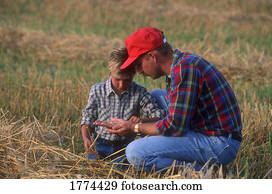 Father and son looking at the crop