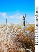 zaun, linie, in, dass, winterbilder
