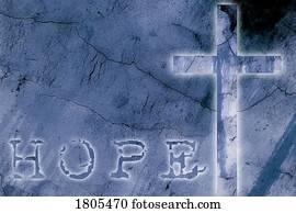 Latin Cross Images | Our Top 1000+ Latin Cross Stock Photos