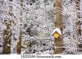 birdhouse, in, dass, winterbilder