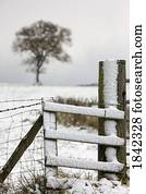 zaun, in, winterbilder