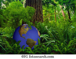 Green and blue globe at base of large tree in rainforest