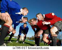 rugby- spieler, in, a, scrum