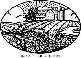 crops b/w