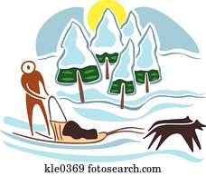 A man dog sledding in the snow