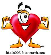 heart flexing muscles