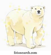 シロクマ イラストレーション 1000 シロクマ ストックアート Fotosearch