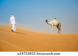 9f680fb338e2e Middle eastern man wearing traditional clothes walking toward camel in  desert, Dubai, United Arab