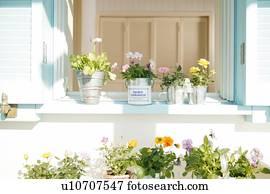 bow window banque d images et photographies 3 779 bow window des images et des photographies. Black Bedroom Furniture Sets. Home Design Ideas