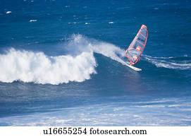 Sailboarding at Paia Bay, Maui, Hawaii, United States Picture