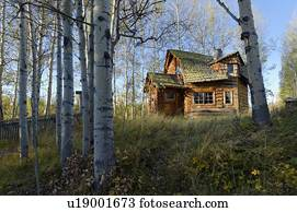 Outhouse Stock Photos And Images 1 362 Outhouse Pictures