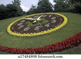 Images Geneve Fleur Horloge Suisse Europe A Fleur Horloge