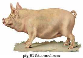Pig Stock Illustrations | Our Top 1000+ Pig art | Fotosearch